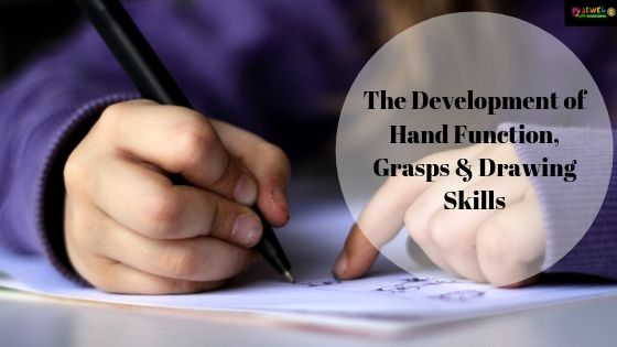 Development of Hand Function